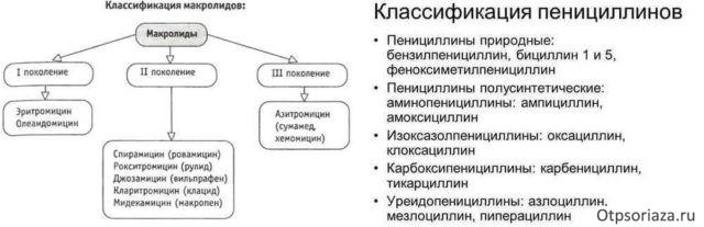 Классификация макролидов и пенициллинов